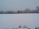 WHCC in the snow_1