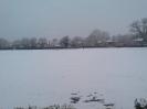 WHCC in the snow